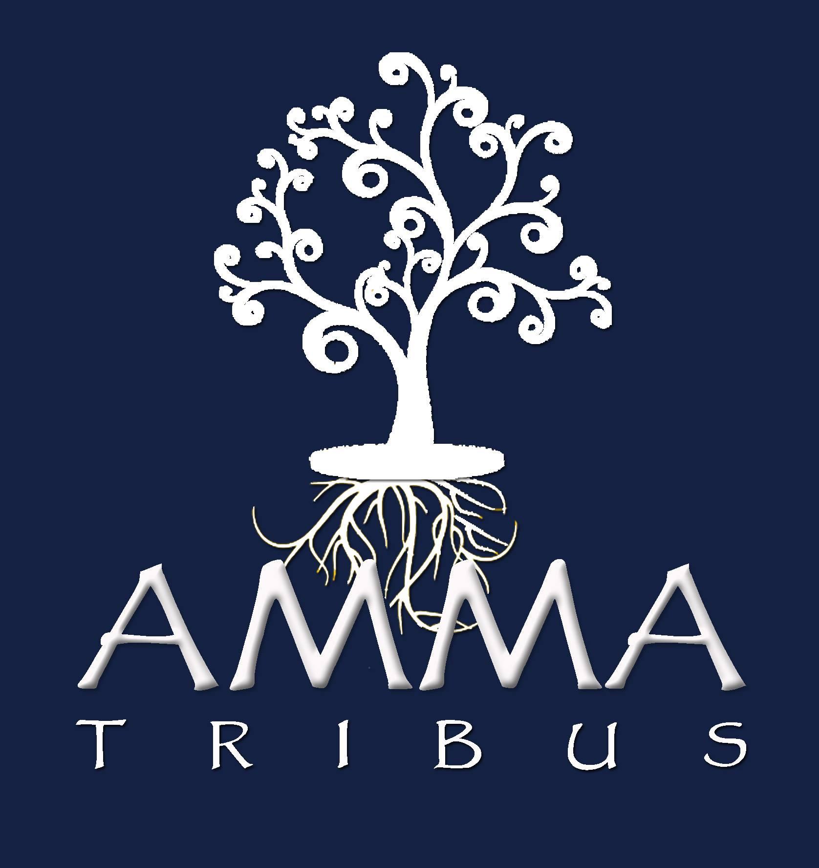 Colaborando con Tribus Amma