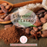 Ceremonia de Cacao